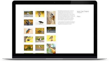 web creada con el diseño Javier Fernández de Bluekea