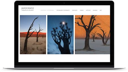 web creada con el diseño Atlas de Bluekea