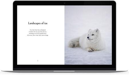 web creada con el diseño Oirase de Bluekea